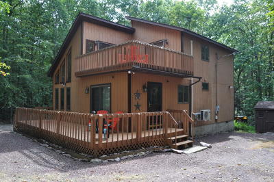 Jim Thorpe Single Family Home For Sale: 16 Recreation Ct