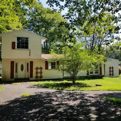 Pocono Summit Single Family Home For Sale: 6529 Laurel Rd