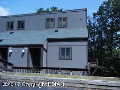 Tannersville Single Family Home For Sale: 177 Upper Village Way
