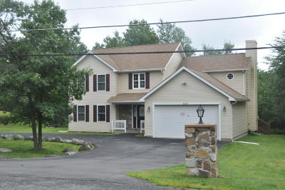 Long Pond Single Family Home For Sale: 167 Saw Mill Road Ml