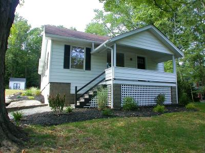 Cresco Single Family Home For Sale: 1249 Route 390