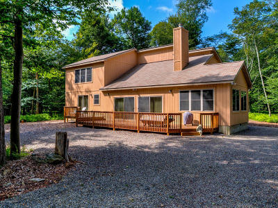 Gouldsboro Single Family Home For Sale: 109 Eagles View Drive