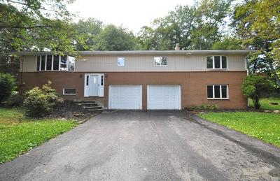 Kunkletown Single Family Home For Sale: 2109 Spruce Rd