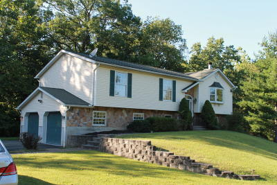 Stroudsburg Single Family Home For Sale: 208 Beverly Ln