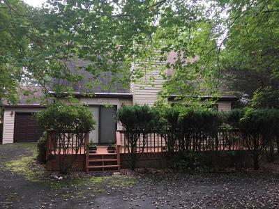 Jim Thorpe Single Family Home For Sale: 104 Drakes Dr