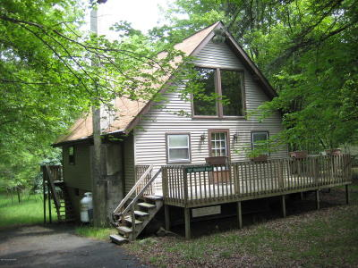 Albrightsville Single Family Home For Sale: 307 Mountain Rd