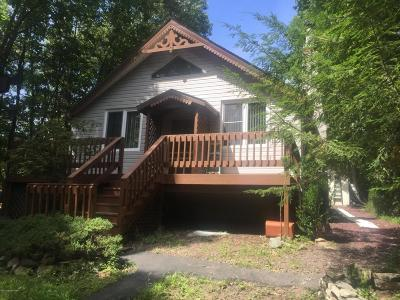 East Stroudsburg Single Family Home For Sale: 2453 Dornick Rd