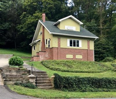 Jim Thorpe Single Family Home For Sale: 898 Center Ave