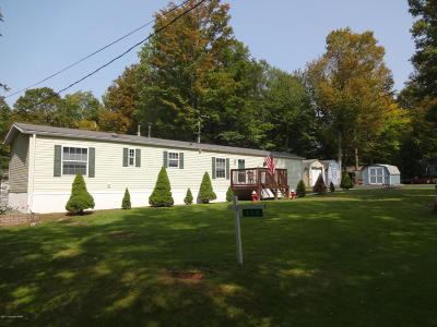 Gouldsboro Single Family Home For Sale: 117 Woodchuck Ln