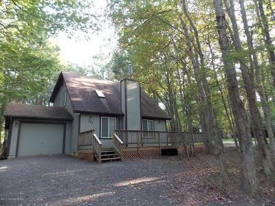 Albrightsville Single Family Home For Sale: 158 Towamensing Trl