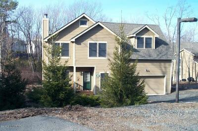 Tannersville Single Family Home For Sale: 160 Pine Ct