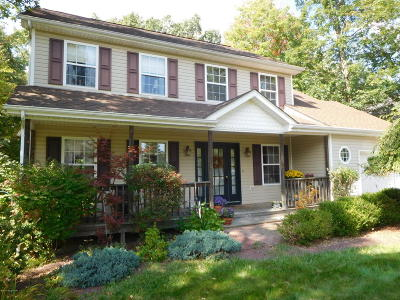 East Stroudsburg Single Family Home For Sale: 2429 Horseshoe Dr