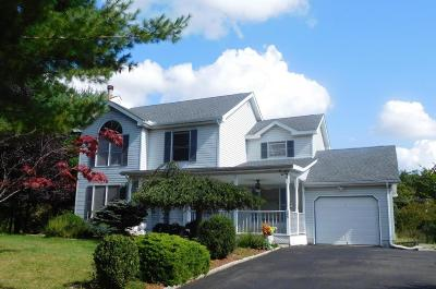 East Stroudsburg Single Family Home For Sale: 305 Jennifer Ln