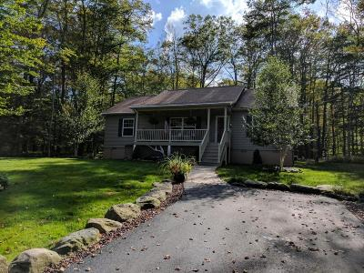 Gouldsboro Single Family Home For Sale: 12 State Park Dr