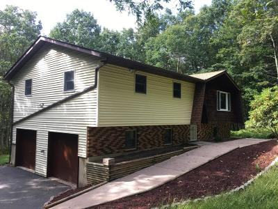 Albrightsville Single Family Home For Sale: 96 Araphoe Rd