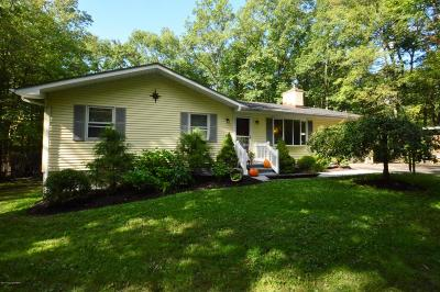 Saylorsburg Single Family Home For Sale: 149 Pine Hollow Rd