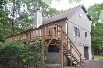 Jim Thorpe Single Family Home For Sale: 161 Piney Woods Dr