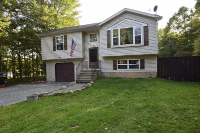 Albrightsville Single Family Home For Sale: 172 Tapuco Dr