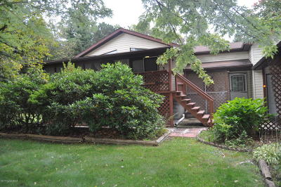 Jim Thorpe Single Family Home For Sale: 308 Cold Spring Dr
