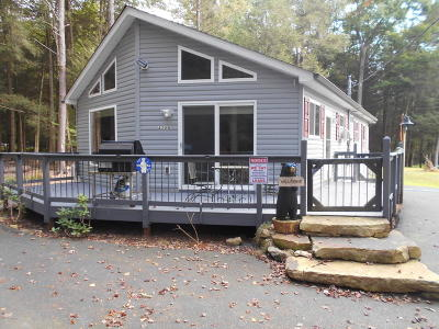 Albrightsville Single Family Home For Sale: 40 Big Pine Drive