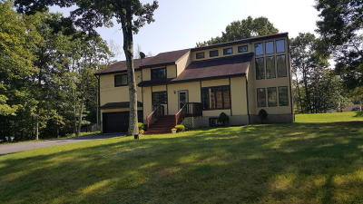 East Stroudsburg Single Family Home For Sale: 206 Dry Pond Dr