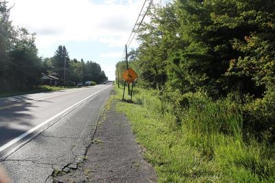 Blakeslee Residential Lots & Land For Sale: 1 Route 115