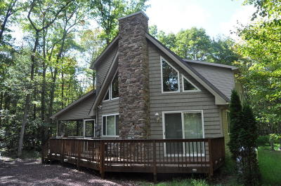 Jim Thorpe Single Family Home For Sale: 19 Cypress Dr