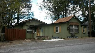 Saylorsburg Single Family Home For Sale: 215 Lake Rd