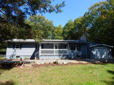 Albrightsville Single Family Home For Sale: 1356 N Old Stage Rd