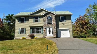 Long Pond Single Family Home For Sale: 207 Beaver Dam Rd