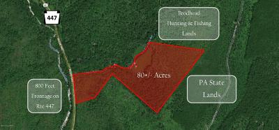 Cresco Residential Lots & Land For Sale: 447 Pa Rt 447