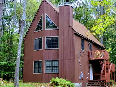 Gouldsboro Single Family Home For Sale: 7 N Lehigh River Dr