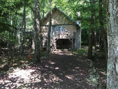 Pocono Summit Single Family Home For Sale: 166 Nadine Blvd
