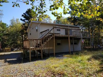 Blakeslee Single Family Home For Sale: 277 Fern Ridge Road