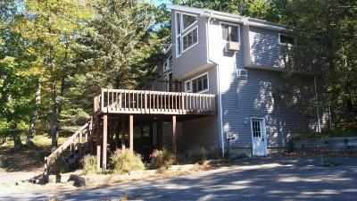 Carbon County, Lehigh County, Monroe County, Northampton County, Pike County, Wayne County Single Family Home For Sale: 5492 Bushkill Falls Road