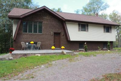 Gouldsboro Single Family Home For Sale: 223 L