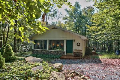 Pocono Pines Single Family Home For Sale: 2161 Red Spruce Rd