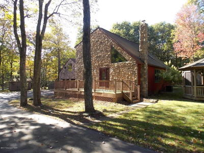 Jim Thorpe Single Family Home For Sale: 115 Behrens Rd