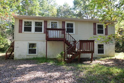 Towamensing Trails Single Family Home For Sale: 66 Thomas Ln
