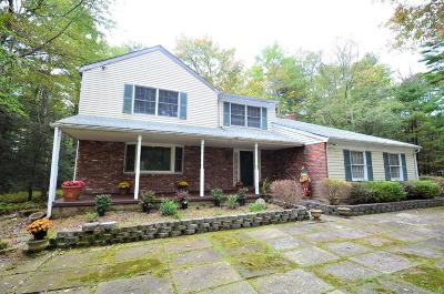 Saylorsburg Single Family Home For Sale: 2811 Pine St