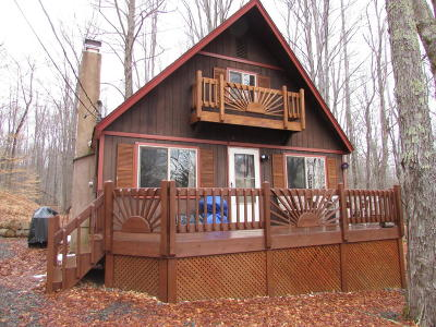Pocono Lake Single Family Home For Sale: 174 Bushkill Dr