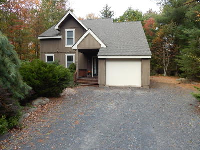 Pocono Pines Single Family Home For Sale: 489 Brookside Dr