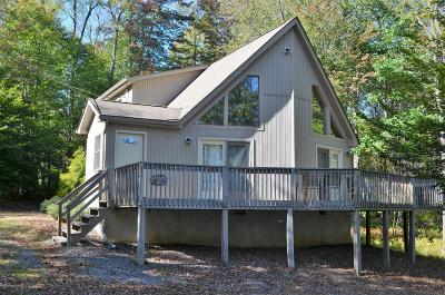 Pocono Lake Single Family Home For Sale: 104 Totem Trl