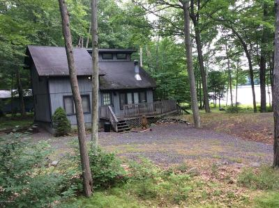 Pocono Lake Single Family Home For Sale: 107 Lc Larson Dr