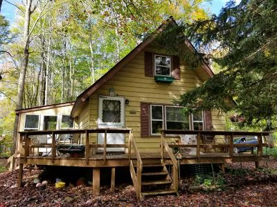 Pocono Lake Single Family Home For Sale: 222 Outer Dr