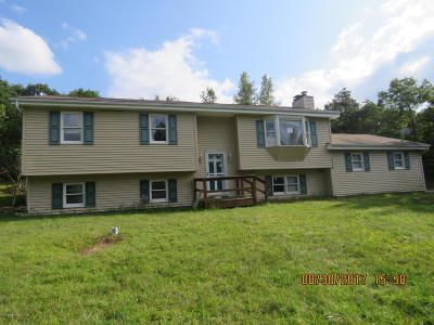 Blakeslee Single Family Home For Sale: 1683 Allegheny Dr