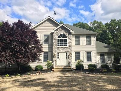 Tannersville Single Family Home For Sale: 532 Fish Hill Rd
