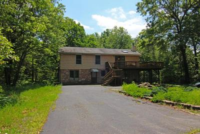 Jim Thorpe Single Family Home For Sale: 53 Dilldown Dr