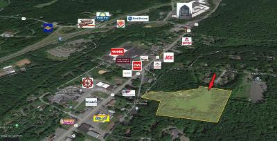 Tannersville Commercial For Sale: 330 Learn Rd