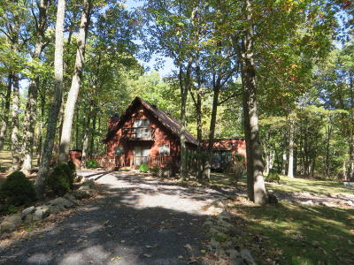 Effort Single Family Home For Sale: 207 White Butte Dr